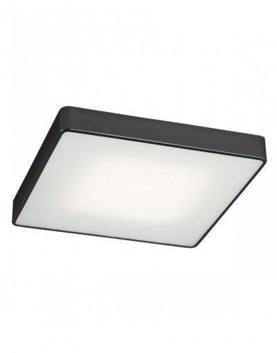 Argon ONTARIO LED 3576